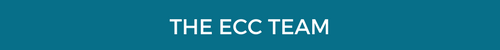 ECC-How does it work-